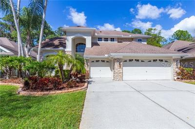 Tampa Single Family Home For Sale: 9822 Gretna Green Drive