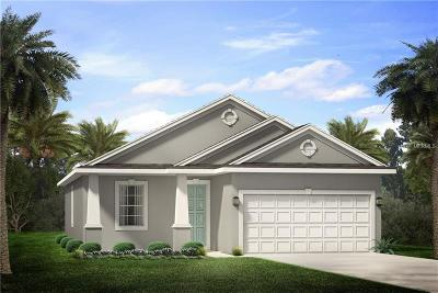 Palm Harbor Single Family Home For Sale: 2626 Surrey Drive