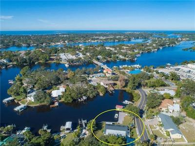 Tarpon Springs Single Family Home For Sale: 301 N Spring Boulevard