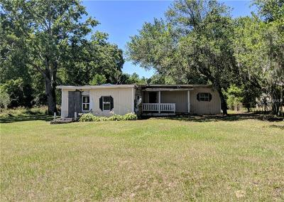 Thonotosassa Single Family Home For Sale: 9908 Belle Smith Road