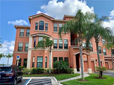 Clearwater FL Rental For Rent: $2,900