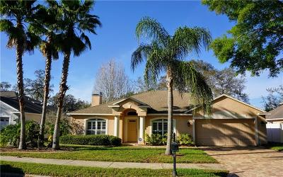 Hernando County, Hillsborough County, Pasco County, Pinellas County Rental For Rent: 803 Duval Court