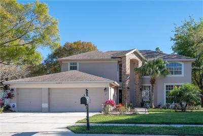 Palm Harbor Single Family Home For Sale: 5682 Stag Thicket Lane