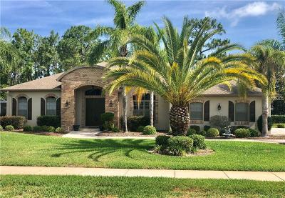 Spring Hill Single Family Home For Sale: 5417 Leather Saddle Lane