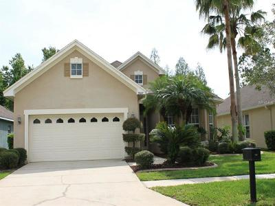 Tampa Single Family Home For Sale: 9607 Greenpointe Drive