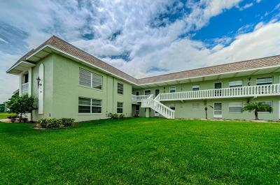 Tarpon Springs Condo For Sale: 1250 S Pinellas Avenue #310