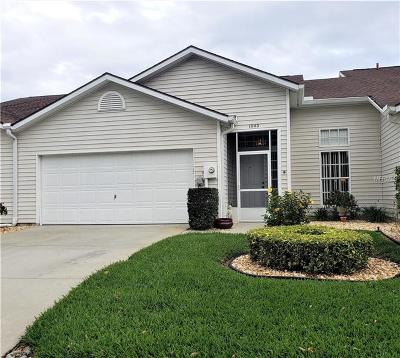 Pasco County Villa For Sale: 1640 Lake Heron Drive