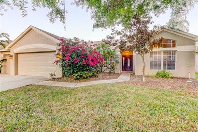 Palm Harbor Single Family Home For Sale: 5155 Karlsburg Place