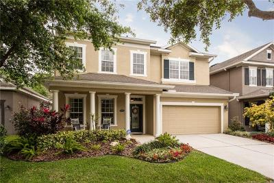 Tampa Single Family Home For Sale: 6413 Sea Lavender Lane