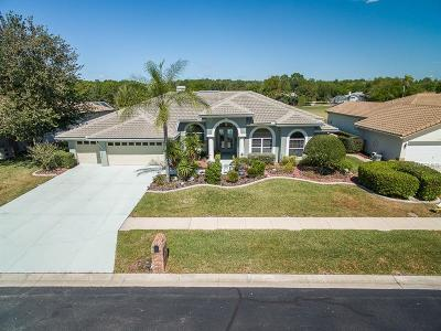 Tarpon Springs Single Family Home For Sale: 1258 Berkshire Lane
