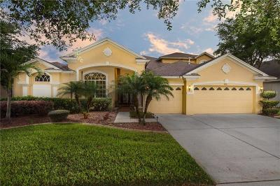 Hillsborough County, Pasco County, Pinellas County Single Family Home For Sale: 3010 Marble Crest Drive