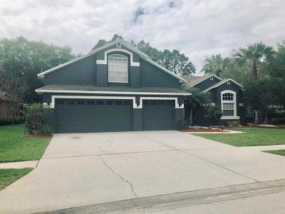 Hillsborough County Single Family Home For Sale: 12512 Leatherleaf Drive