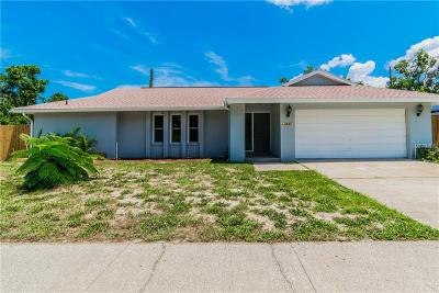 Palm Harbor Single Family Home For Sale: 2405 Hawk Avenue