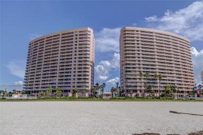Pinellas County Rental For Rent: 1340 Gulf Boulevard #20-A
