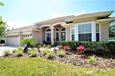 Lutz Single Family Home For Sale: 6113 Cognac Circle