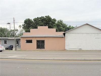 Hillsborough County Commercial For Sale: 290829102914 E Dr Martin Luther King Jr Boulevard