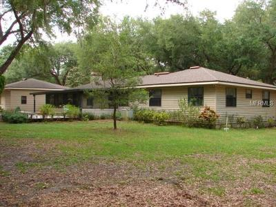 Safety Harbor Single Family Home For Sale: 3301 Meander Lane