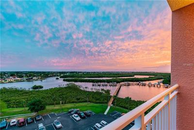New Port Richey Condo For Sale: 4516 Seagull Drive #811