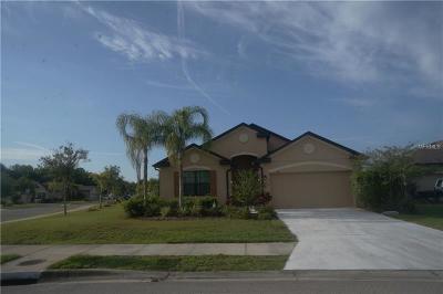 Palmetto Single Family Home For Sale: 7419 62nd Court E
