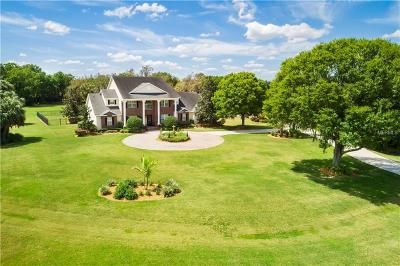 Lithia Single Family Home For Sale: 11530 Hammock Oaks Court