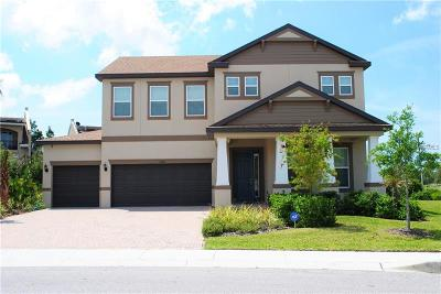 Tarpon Springs Single Family Home For Sale: 1408 Keystone Ridge Circle