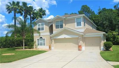 Wesley Chapel Single Family Home For Sale: 5312 Windingbrook Trail