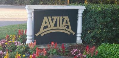 Lutz Residential Lots & Land For Sale: 17053 Comunidad De Avila