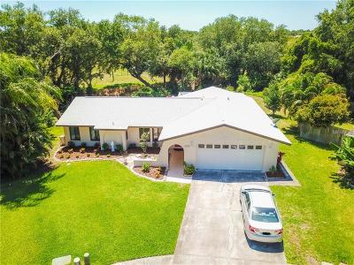 Pinellas Park Single Family Home For Sale: 6512 Creekview Terrace