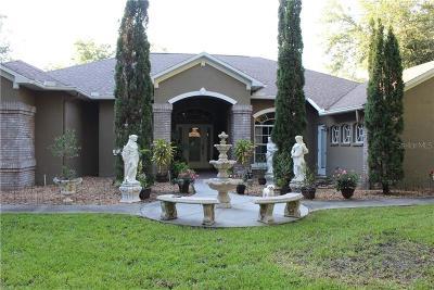 Weeki Wachee Single Family Home For Sale: 11412 Picardy Court