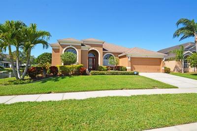 St Petersburg Single Family Home For Sale: 656 Addison Drive NE