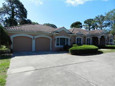 Tarpon Springs Single Family Home For Sale: 1011 Riverside Ridge Road