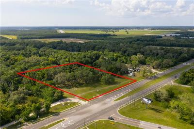 Hernando County Commercial For Sale: 1265 Broad Street