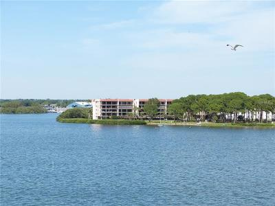 Dunedin FL Rental For Rent: $1,995
