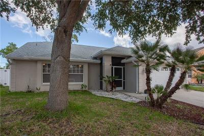 Tarpon Springs Single Family Home For Sale: 398 Wood Chuck Ave