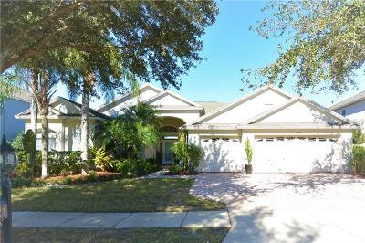 Tampa Single Family Home For Sale: 10738 Plantation Bay Drive