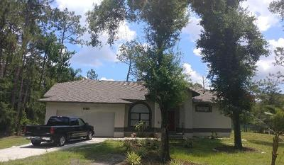 Wesley Chapel Single Family Home For Sale: 7630 Conrad Street