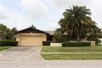 Clearwater Single Family Home For Sale: 2468 Moore Haven Drive E