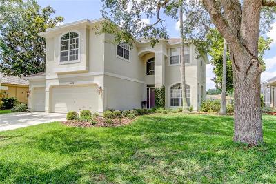 Palm Harbor Single Family Home For Sale: 4663 Ayron Terrace
