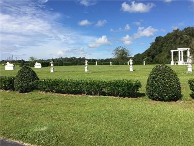 Dade City, San Antonio Residential Lots & Land For Sale: 41465 Stanton Hall Drive