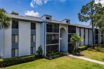 Tarpon Springs Condo For Sale: 1309 E Pine Ridge Circle E #A3