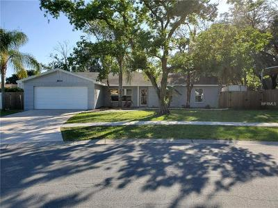 Valrico Single Family Home For Sale: 3844 Highgate Drive