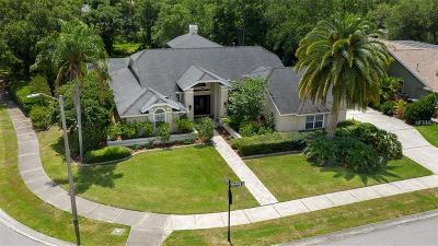 Safety Harbor, Safety Harobr Single Family Home For Sale: 2225 Windsong Court