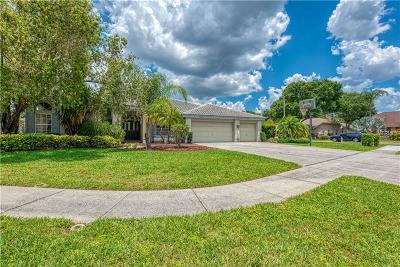 Tarpon Springs Single Family Home For Sale: 698 Glenwood Terrace
