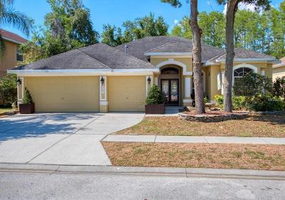 Tarpon Springs Single Family Home For Sale: 467 Denise Street