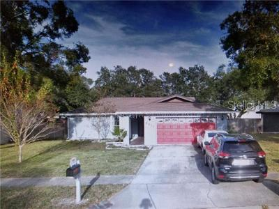 Pinellas Park Single Family Home For Sale: 6811 Circle Creek Drive