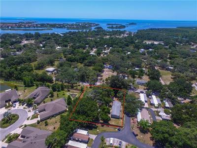 Pinellas County, Pasco County, Hernando County, Hillsborough County, Manatee County Multi Family Home For Sale: 1138 Calvary Road