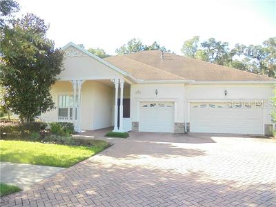 Hernando County, Hillsborough County, Pasco County, Pinellas County Single Family Home For Sale: 19906 Tattnall Way