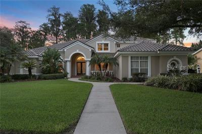 Lutz Single Family Home For Sale: 18214 Clear Lake Drive
