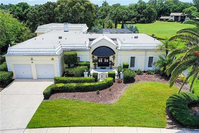 Palm Harbor Single Family Home For Sale: 112 Annwood Road