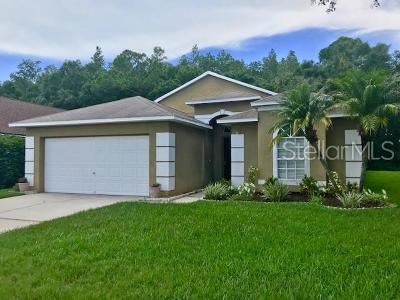Oldsmar Single Family Home For Sale: 620 Lake Cypress Circle